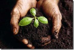 crear-un-ecosistema-emprendedor-claves-inversion-fiscalidad