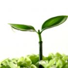 emprender-orientado-al-cliente-lean-startup