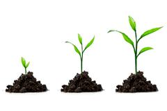 ¿Entiendes el motor de crecimiento de tu modelo de negocio? | Startups, Estrategia y Modelos de negocio