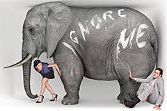 conjura-elefantes-presentacion
