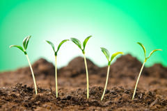 Nueva ronda de inversión en Startupxplore, os presentamos a nuestros inversores
